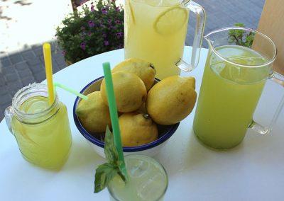 limonada-con-menta