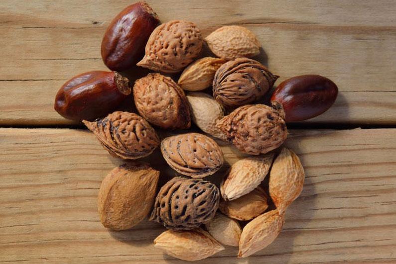 Los frutos secos crudos como alimento indispensable en nuestro día a día